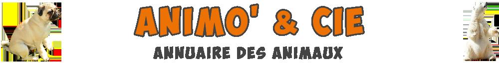 Annuaire Animaux - Animo & Cie